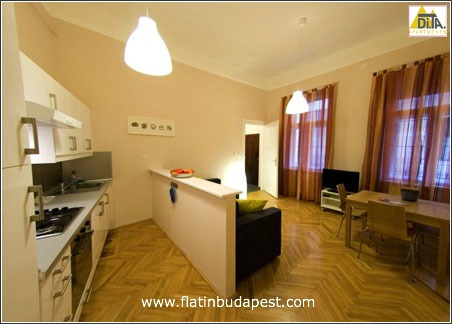 picture dessy apartment in budapest downtown close to the s stefano